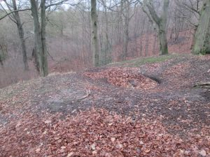 bell-pits-royds-hall-great-wood-6